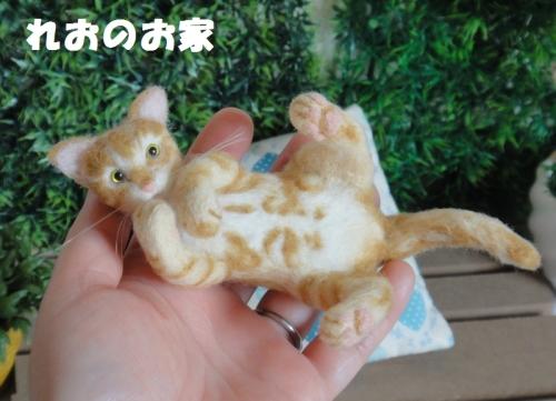茶トラ子猫5