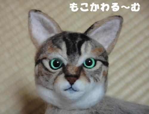 20140707_1.jpg