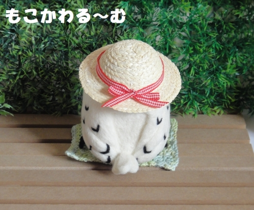 麦わらシロフクロウ3