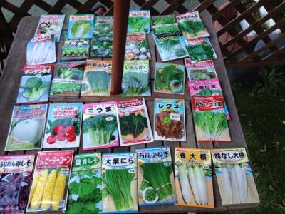2014.2.23家庭菜園