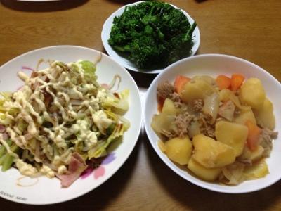 2014.3.20晩飯