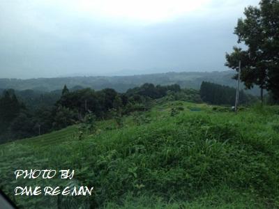2014.8.3開墾地9