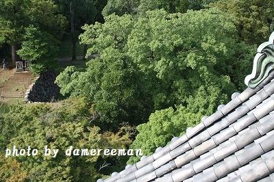 2014.8.11松江城天守閣6