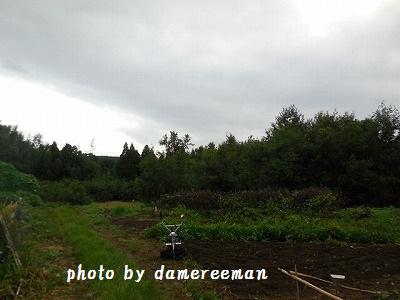 2014.9.21開墾地