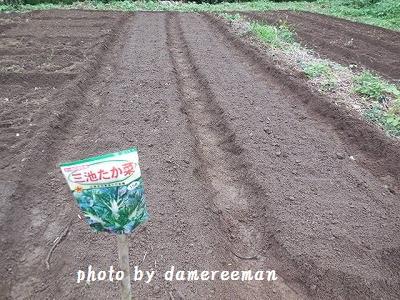 2014.9.20開墾地32