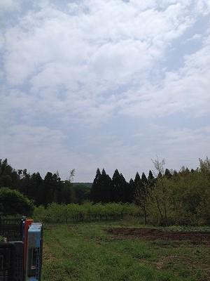 2014.4.19開墾地4