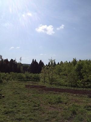 2014.4.26開墾地4