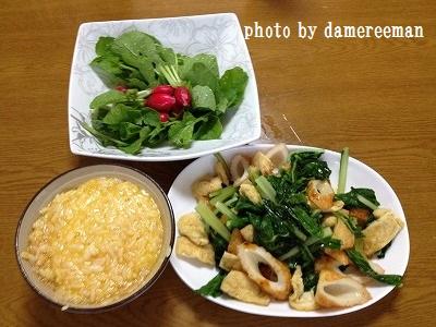 2014.5.29家庭菜園9