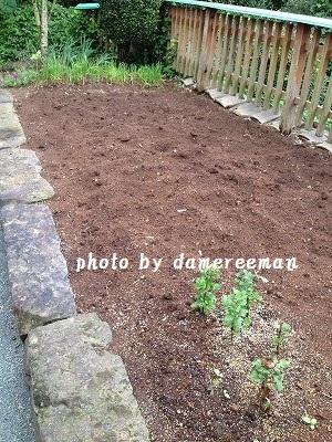 2014.8.16家庭菜園