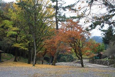 2014.11.8竜門の滝15