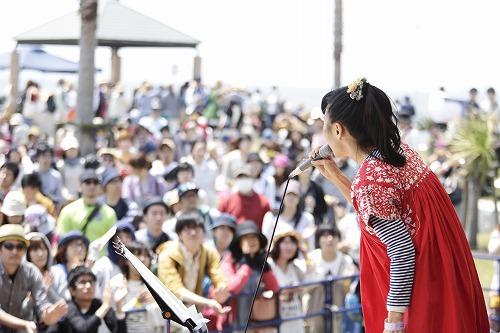 2014羊毛_5
