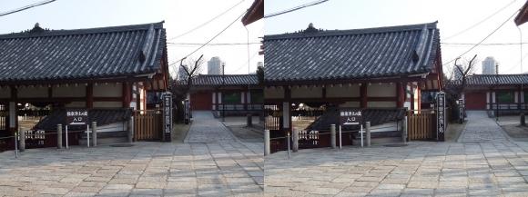 四天王寺 亀井堂①(平行法)
