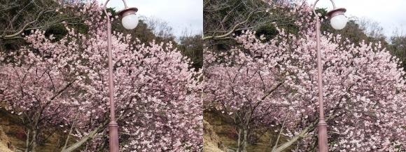 千光寺山公園②(平行法)