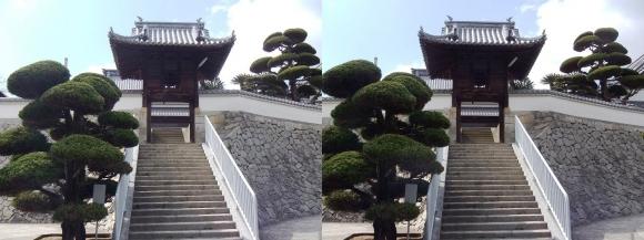 重楽寺(交差法)