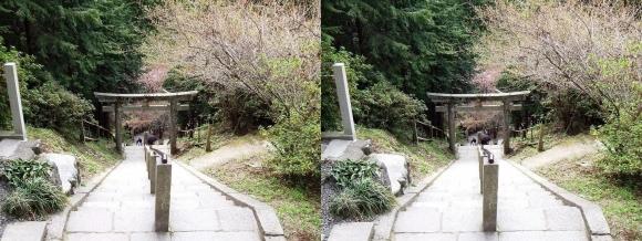 金峯山寺 脳天大神 龍王院①(平行法)