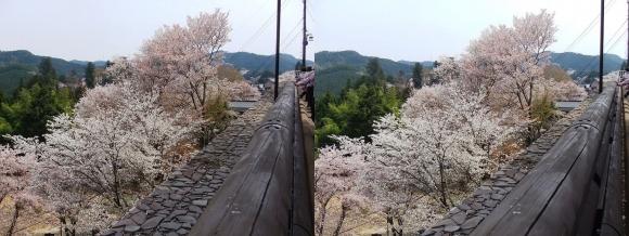 金峯山寺①(平行法)