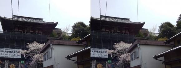 金峯山寺 仁王門(交差法)