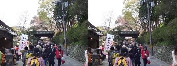 吉野山 黒門①(交差法)