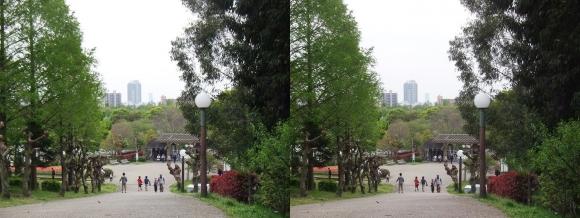 鶴見緑地公園内④(交差法)