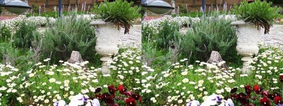 鶴見緑地公園の花㉒(平行法)