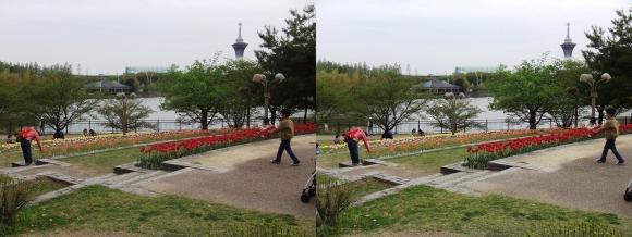 鶴見緑地公園内①(平行法)