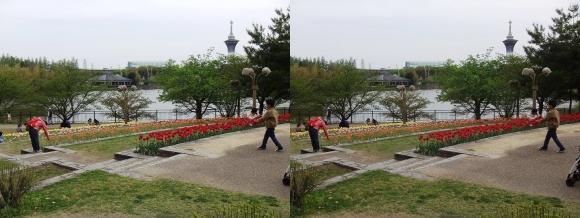 鶴見緑地公園内①(交差法)