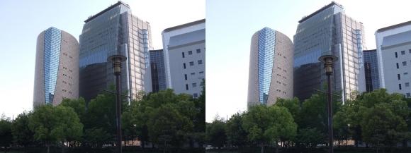 大阪歴史博物館外観(平行法)