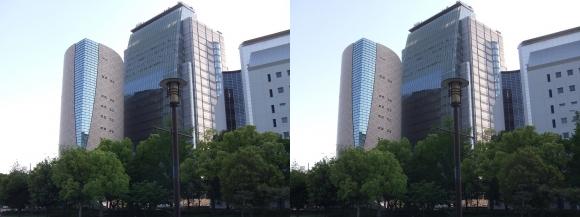 大阪歴史博物館外観(交差法)