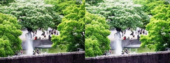 住吉公園④(平行法)