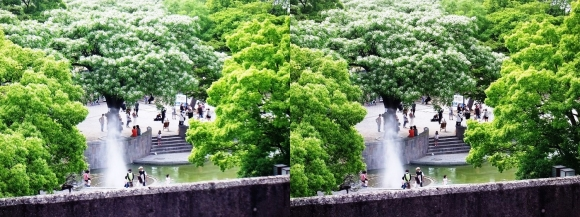 住吉公園④(交差法)