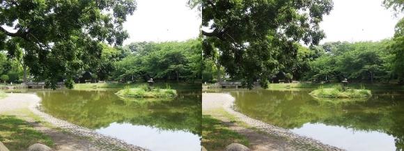 住吉公園①(交差法)