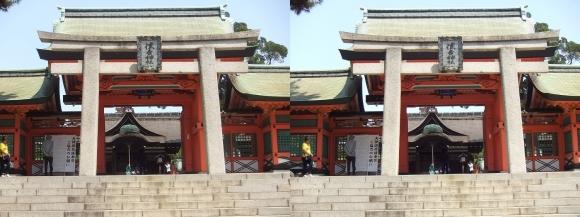 住吉大社角鳥居・幸寿門(平行法)