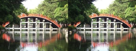 住吉大社反橋⑤(平行法)
