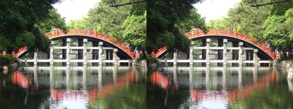 住吉大社反橋⑤(交差法)