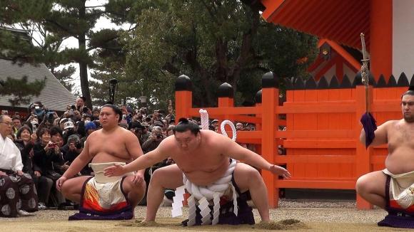 平成25年住吉大社横綱土俵入り(手数入奉納)