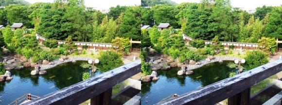 池田城跡公園⑦(平行法)