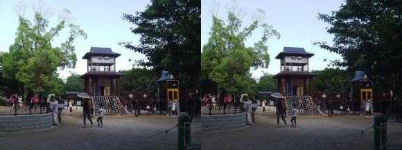 五月山公園(交差法)