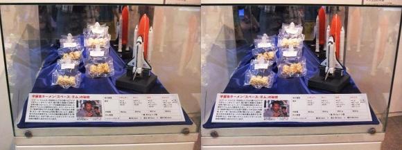 インスタントラーメン発明記念館 宇宙食ラーメン「Space Ram」①(平行法)