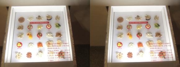 インスタントラーメン発明記念館 カップヌードル物語②(交差法)