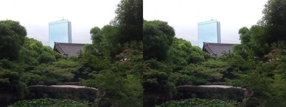 太閤園 一枚岩の石橋『諸縁吉祥の橋』①(平行法)