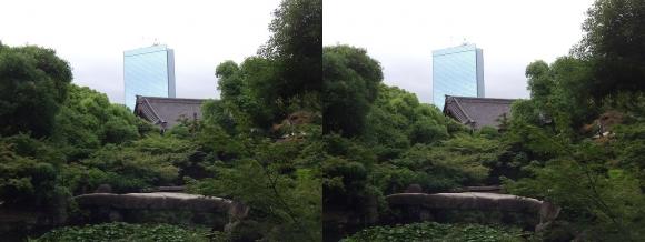 太閤園 一枚岩の石橋『諸縁吉祥の橋』①(交差法)