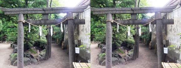 太閤園 『心願成就の網島稲荷』①(交差法)