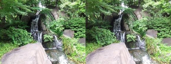 太閤園 滝(交差法)