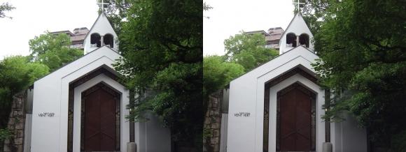 太閤園 ガーデンチャペル『ヴァンベール』(交差法)