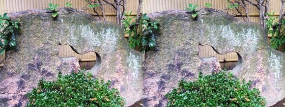 太閤園 瓢箪柄の石(平行法)