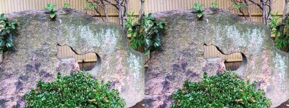 太閤園 瓢箪柄の石(交差法)