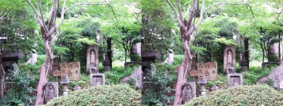 太閤園 石仏①(交差法)
