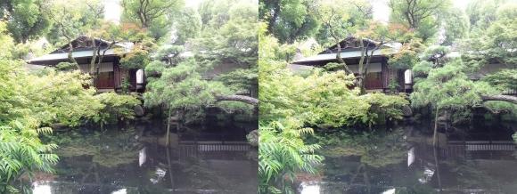 太閤園 料亭『淀川邸』「残月」(平行法)