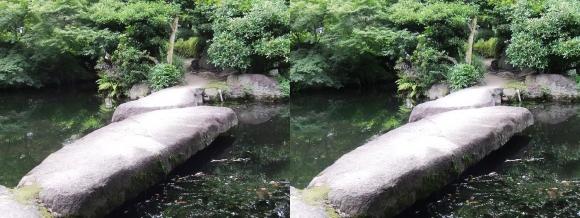 太閤園 飛び石の石橋(平行法)