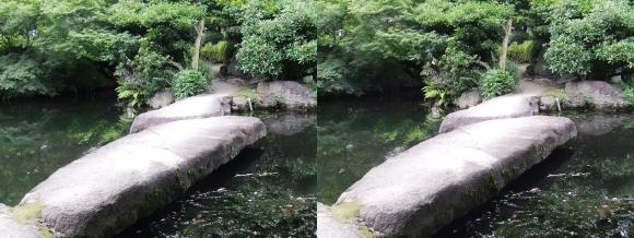 太閤園 飛び石の石橋(交差法)